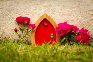 Red-door-ladybird-outside