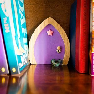 Purple-Star-Bookcase